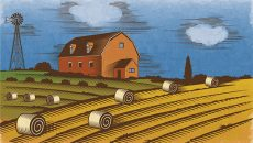 Thumbnail for Mark Scanlan: Farm bill feat